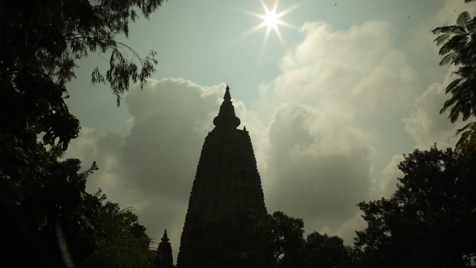 Buddha pbs rewire