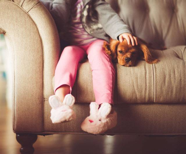 Why You Feel Closer to Your Pet than Your Sibling