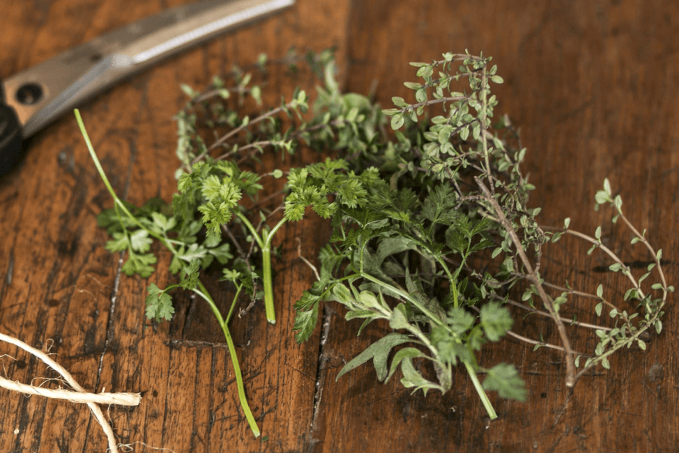 Homegrown Herbs pbs rewire
