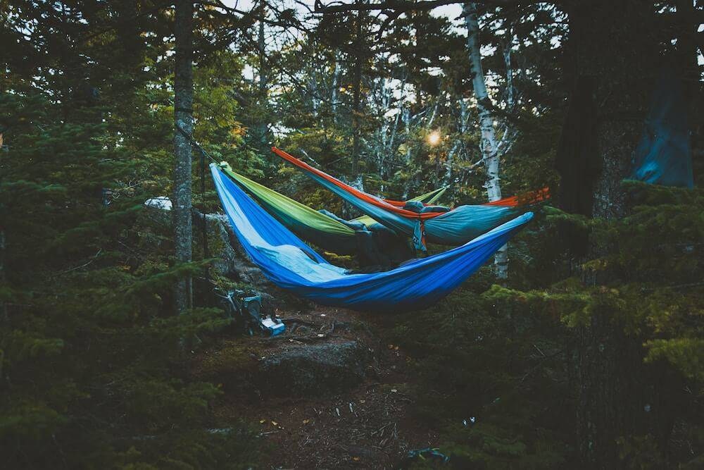 Three people sleep in hammocks in a forest. Rewire PBS Living Sleep