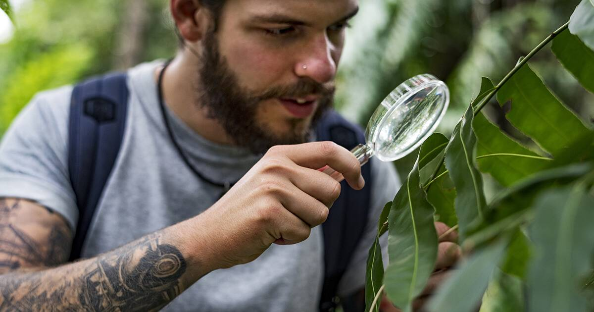 Young, tattooed Biologist in a forest. Rewire PBS Our Future New Species