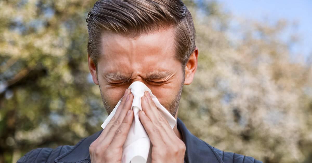 Man blowing his nose. Bad Allergies pbs rewire