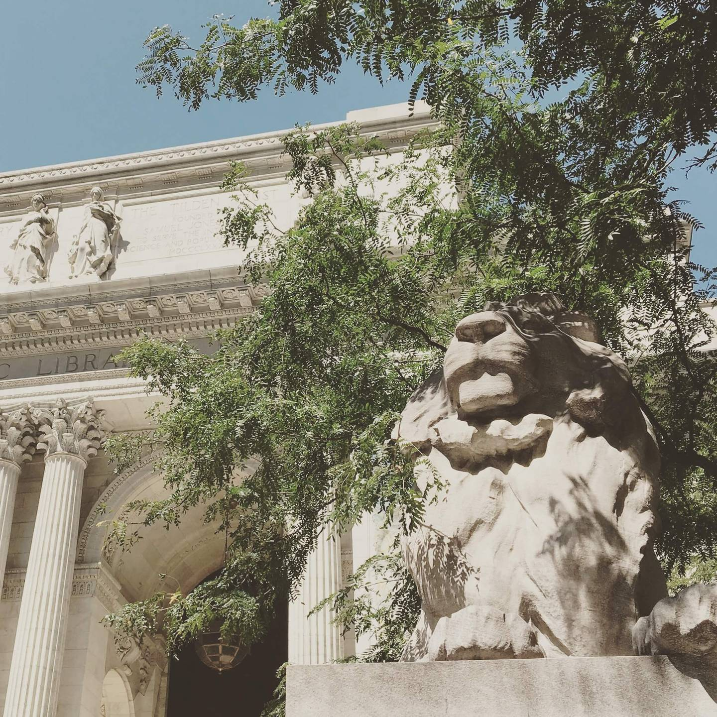 Marble lion in front of grand building, the New York Public Library's Stephen A. Schwarzman Building.