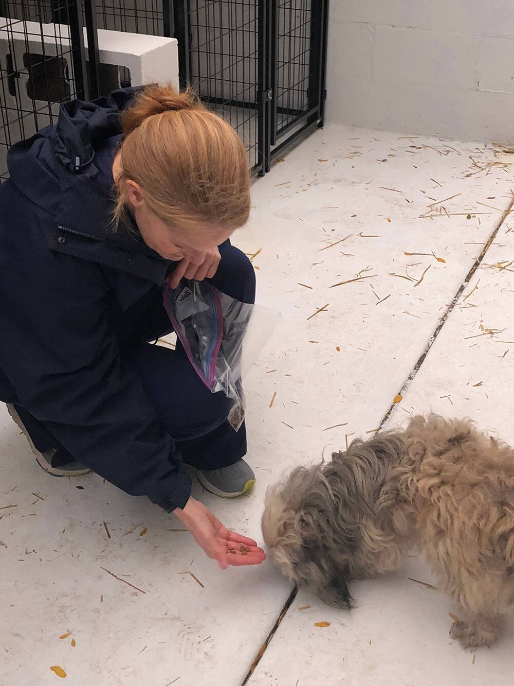 Woman feeding a dog at a Transitional Housing. pbs rewire