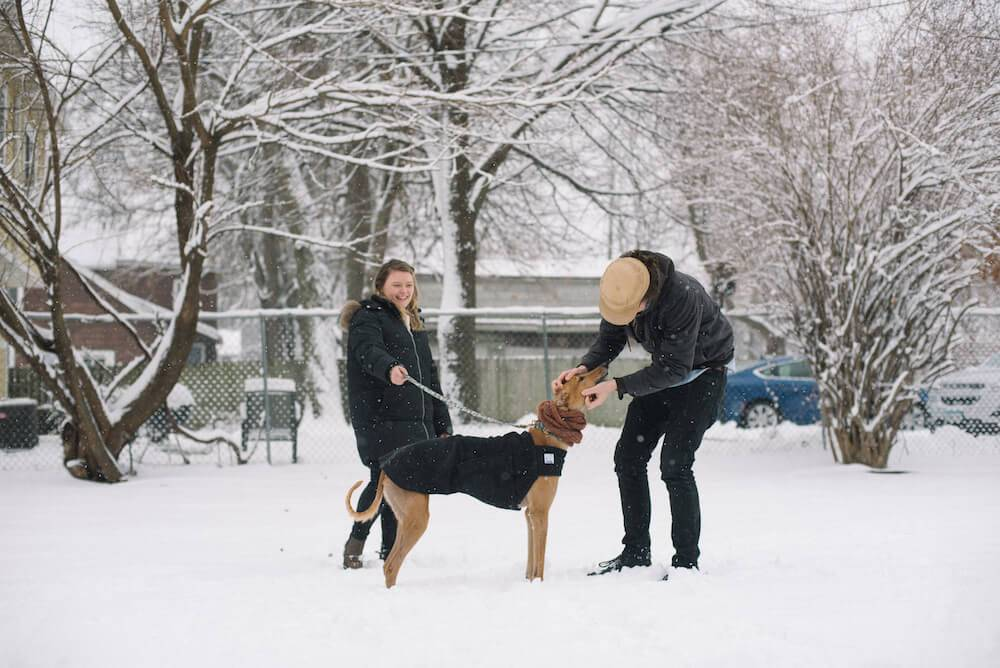 Photo of a couple and a greyhound dog, all wearing black coats, standing in the snow. Rewire PBS Living Greyhound