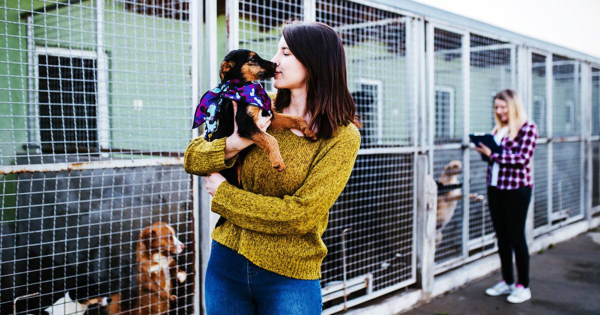 Photo of woman choosing a dog at an animal shelter. Pet Ownership Costs pbs rewire