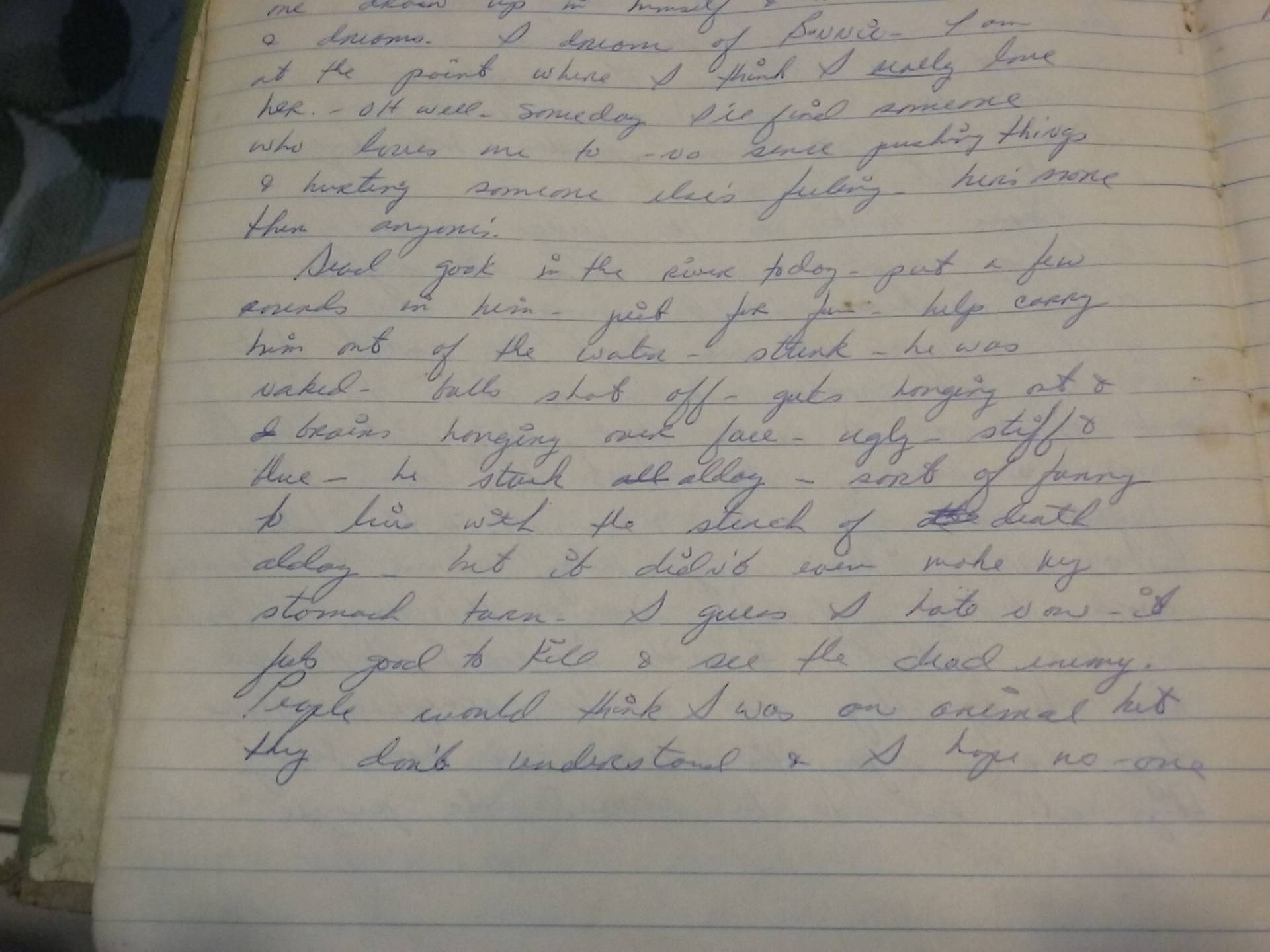 Handwritten page from a journal.