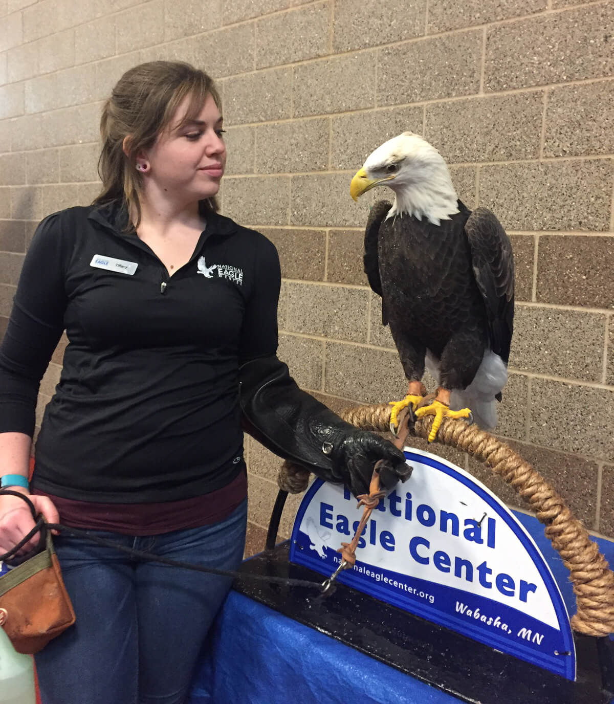 Woman holding a Bald Eagle at an event